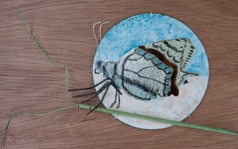 Butterfly 3d enamel art